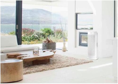 Get Rid of The Smell, Make Your Home Air Cleaner